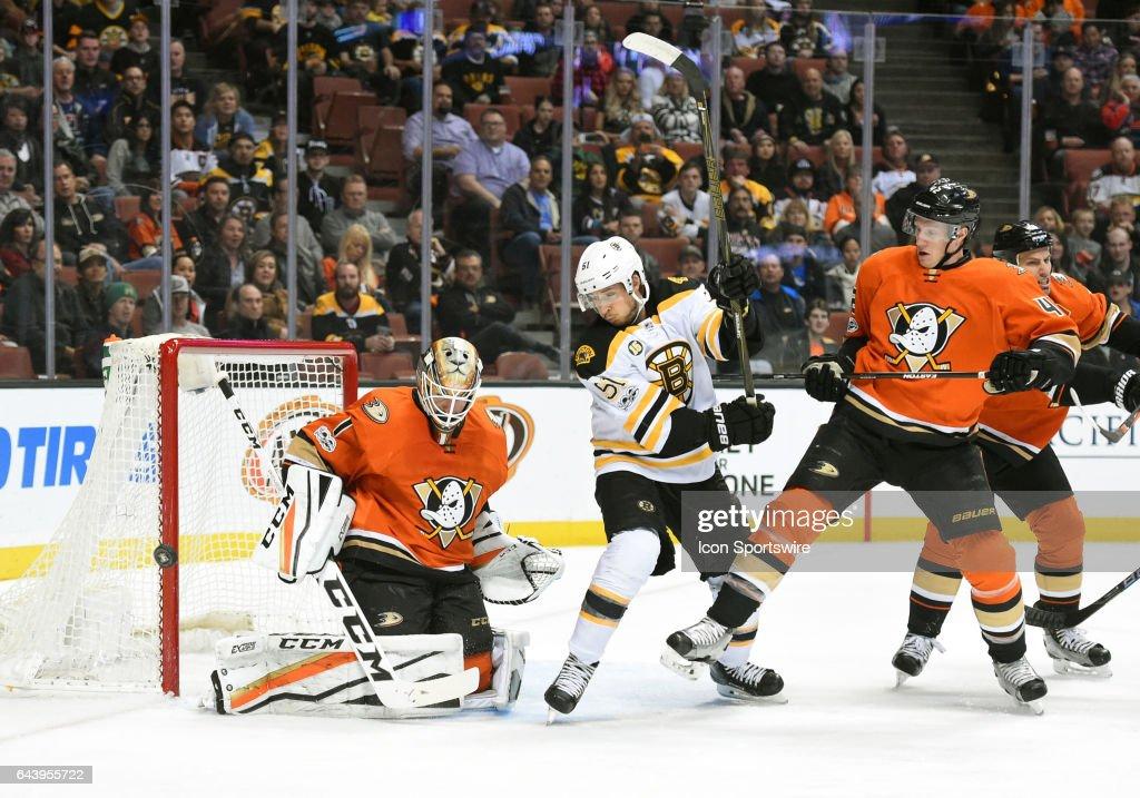 NHL: FEB 22 Bruins at Ducks : News Photo