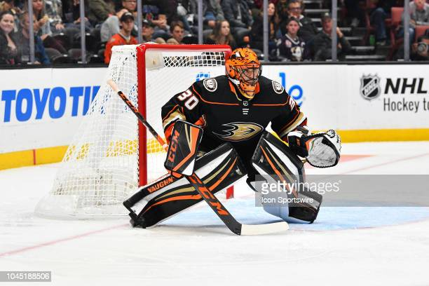 Anaheim Ducks goalie Ryan Miller in action during a NHL preseason game between the Los Angeles Kings and the Anaheim Ducks played on September 26...