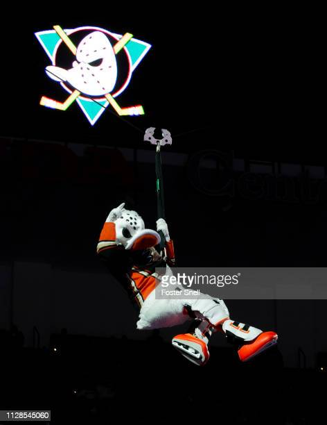Anaheim Ducks mascot Wild Wing repels from the rafters before the game against the Colorado Avalanche at Honda Center on March 3 2019 in Anaheim...