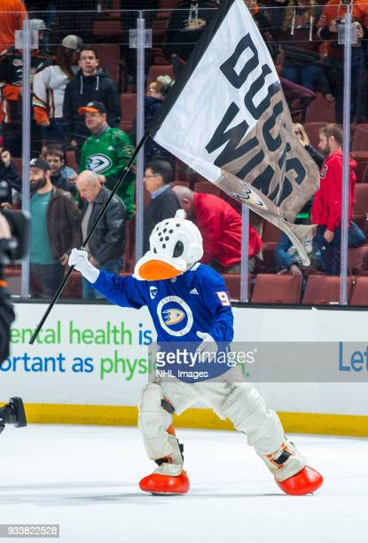 Anaheim Ducks mascot Wild Wing waves a Ducks Win flag after defeating New Jersey Devils 42 during the game at Honda Center on March 18 2018 in...