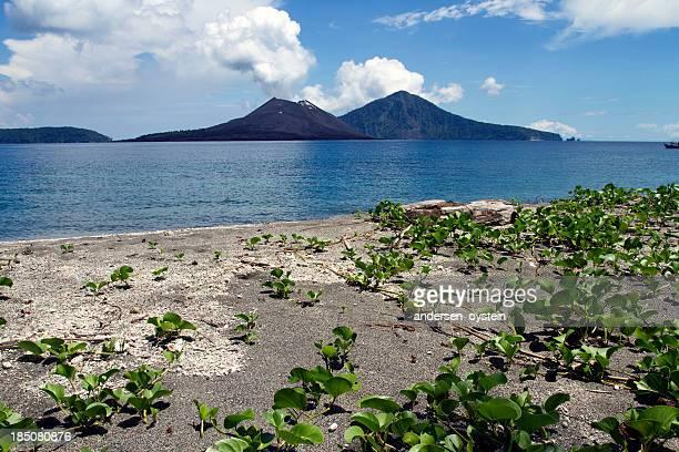 anak krakatau panorama de vista da praia - anak krakatau imagens e fotografias de stock