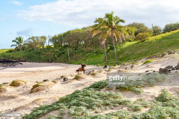 anakena beach in ahu nau nau, easter island, chile - horse easter stock pictures, royalty-free photos & images