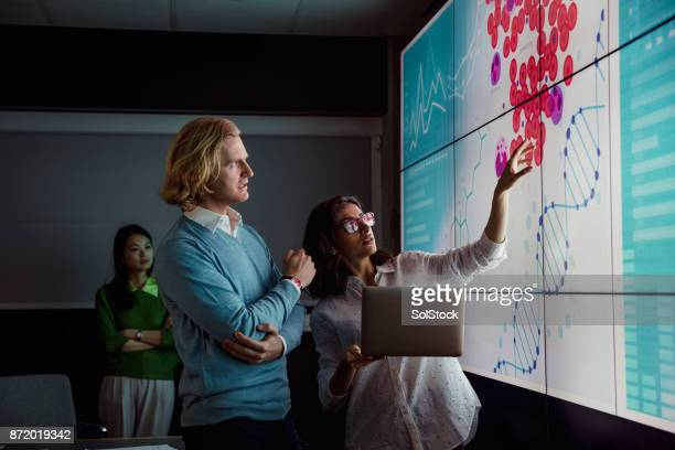 Analysing Data on a Large Display Screen