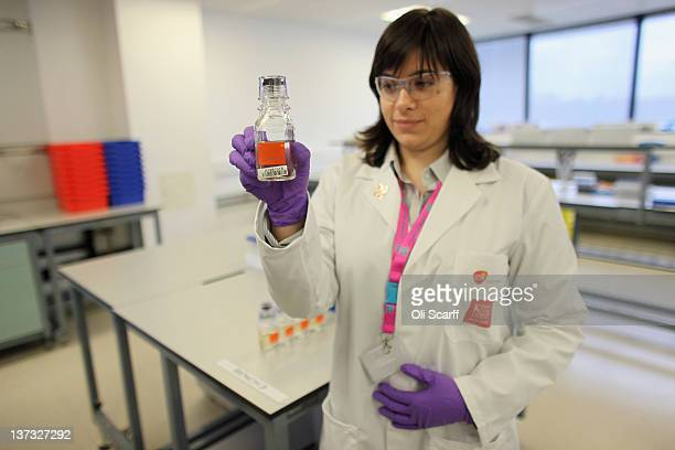 Analyst Ivana Gavrilovic examines a urine sample in the antidoping laboratory which will test athlete's samples from the London 2012 Games on January...