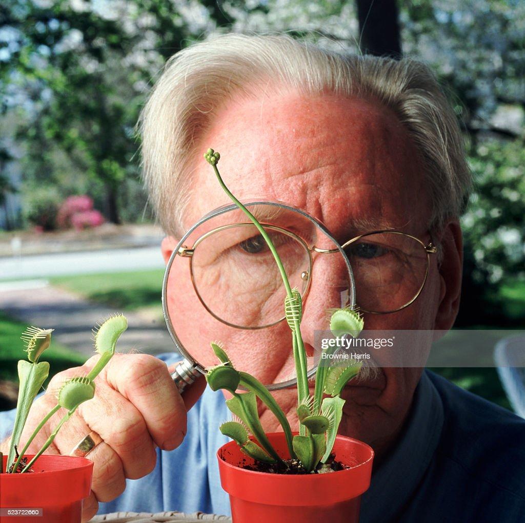 Analyzing plantlife : Stock Photo