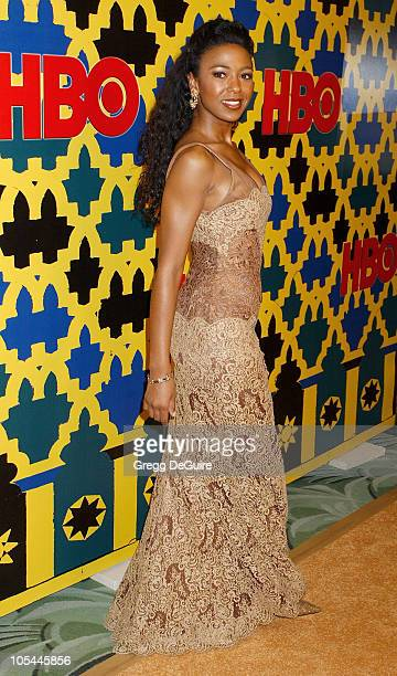 Ananda Lewis during HBO Post Award Reception Celebrating The 62nd Annual Golden Globe Awards Arrivals at Griff's Restaurant in Beverly Hills...