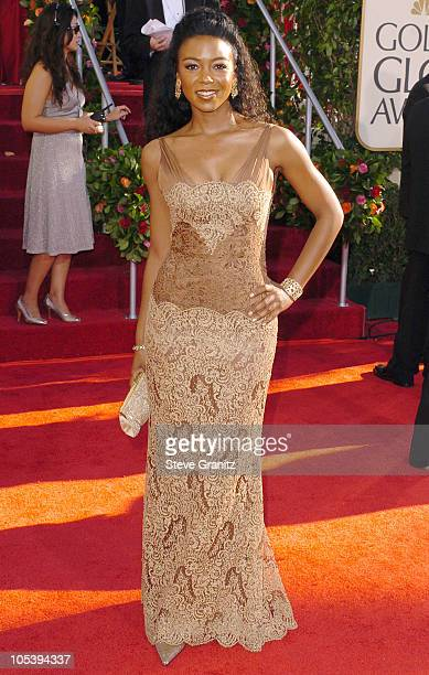 Ananda Lewis during The 62nd Annual Golden Globe Awards Arrivals at Beverly Hilton Hotel in Los Angeles California United States