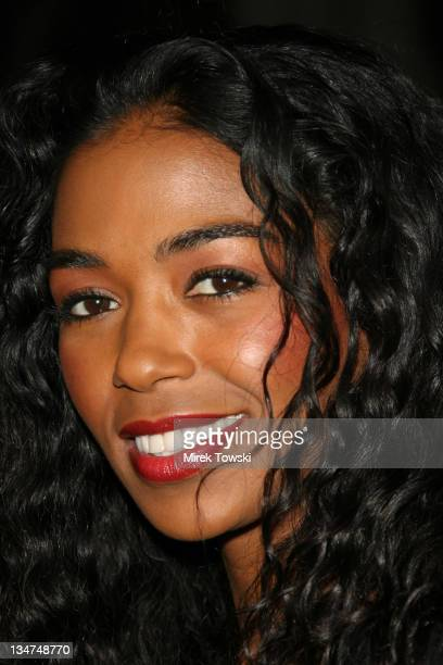 Ananda Lewis during Vagina Monologues Play Opening at The Wilshire Ebell Theatre of Los Angeles in Los Angeles California United States