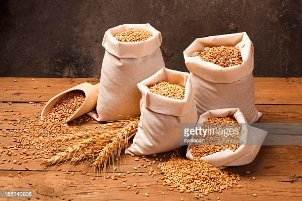 Anatolian wheats