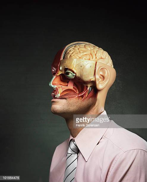 anatomical model dressed in shirt and tie - anatomy stock photos and pictures