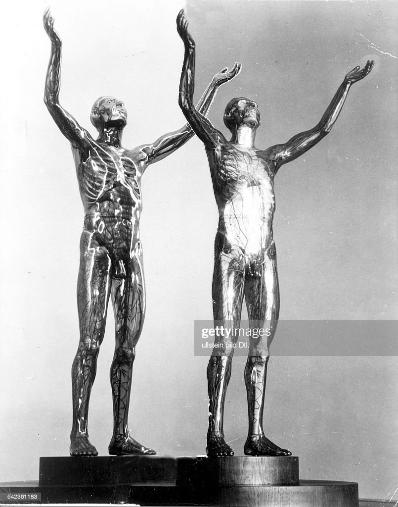 Anatomie Pictures   Getty Images