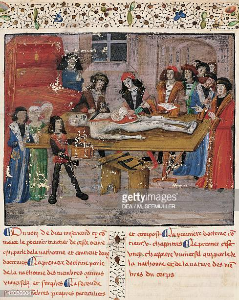 Anatomy lecture at Montpellier medical school, miniature from Chirurgia Magna by Guy de Chauliac, manuscript folio 13 verso, France 14th century.