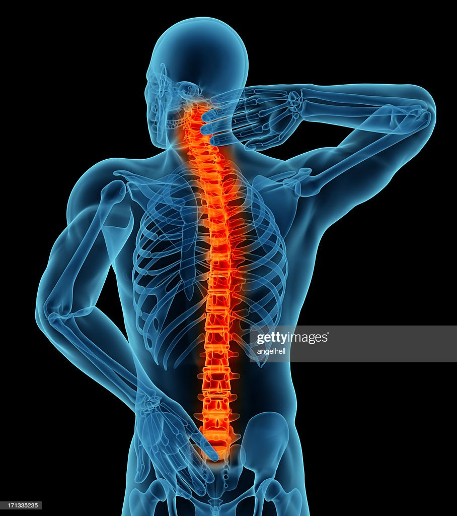 Anatomy Of A Man Showing Back Pain Stock Photo | Getty Images