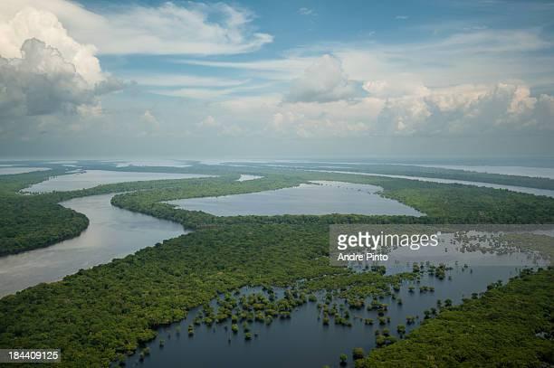 anavilhanas archipelago - archipelago stock pictures, royalty-free photos & images