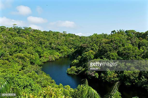 Anavilhanas National Park - Amazon