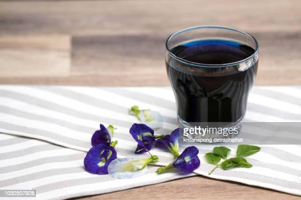 anchan juice,fresh butterfly pea flowers ,health - clitoria bildbanksfoton och bilder