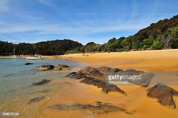 Anchorage Beach in Abel Tasman National Park