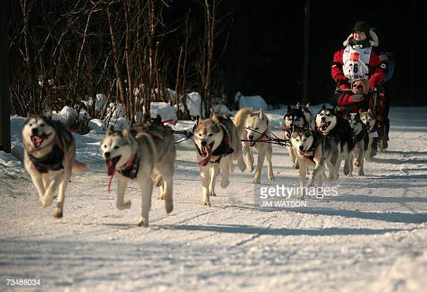 Canadian Karen Ramstead mushs her sled dog team down a trail outside Anchorage Alaska towards their first check point in Eagle River 03 March 2007 at...