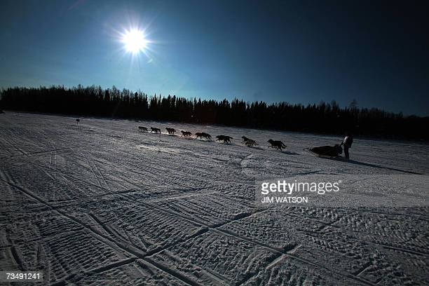 Rookie Jon Korta mushes his sled dog team over frozen Willow Lake as Iditarod XXXV official begins 04 March 2007 in Willow Alaska AFP PHOTO/Jim WATSON