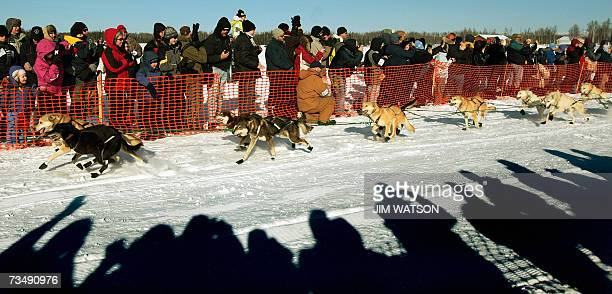Spectators wave and cheers as the Iditarod XXXV begins 04 March 2007 in Willow Alaska Top mushers in the world are taking part in the 35th edition of...