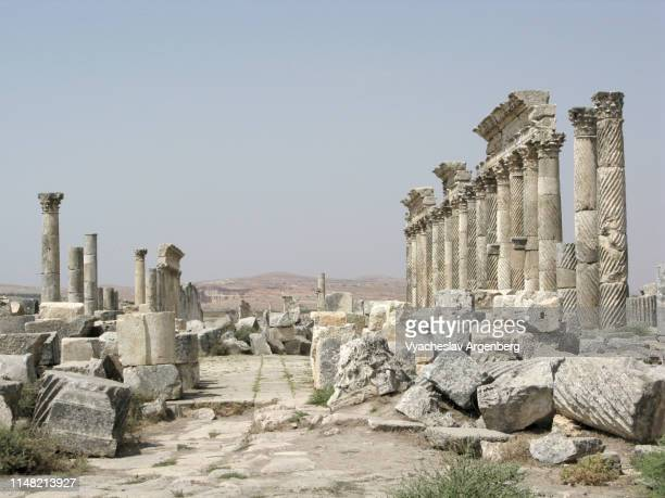 ancient city of apamea, syria - argenberg stock pictures, royalty-free photos & images