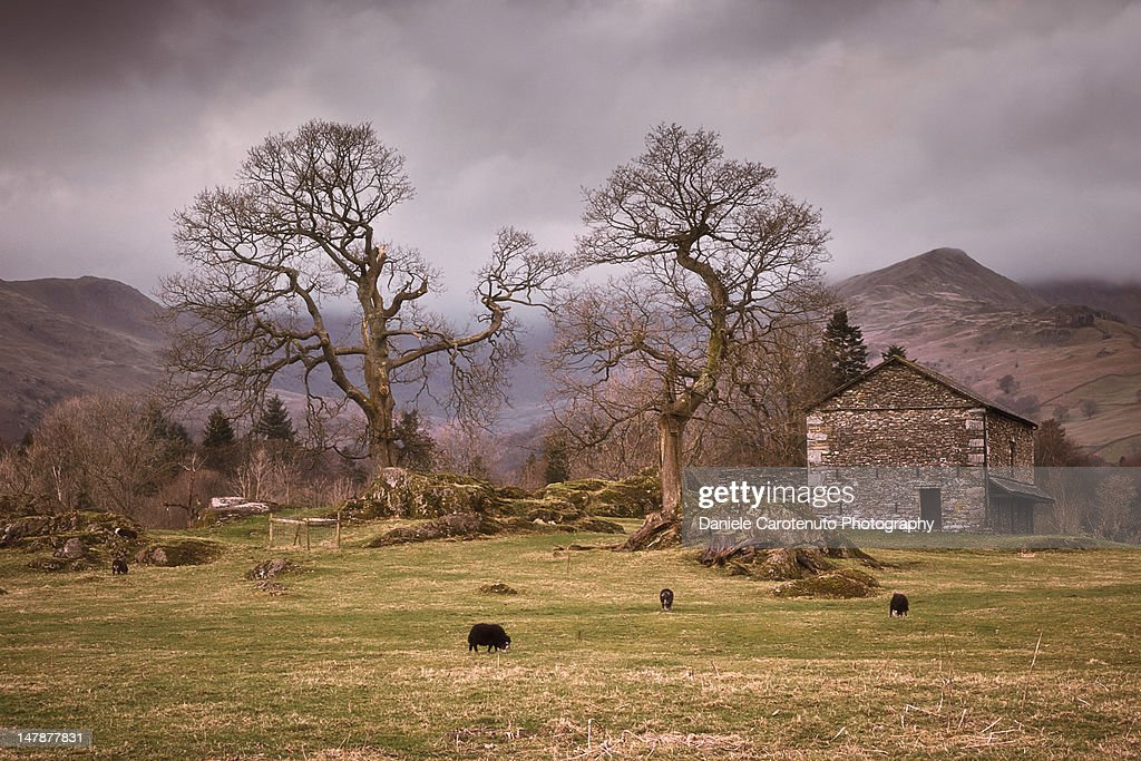 Ancient countryside : Stock Photo