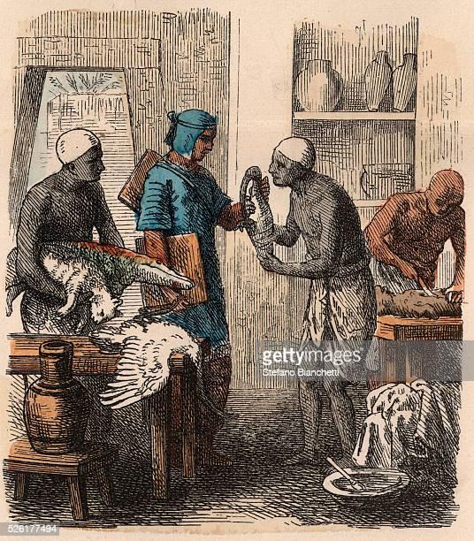 Embalming animals Coloured engraving by Heinrich Leutemann Bilder aus dem Altertume 1866