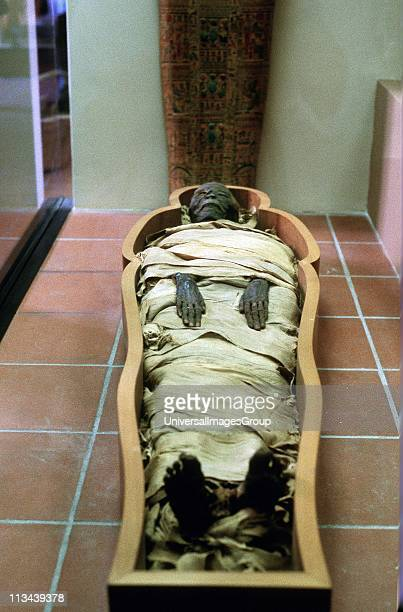 Ancient Egyptian mummy in wrappings Vatican Museum