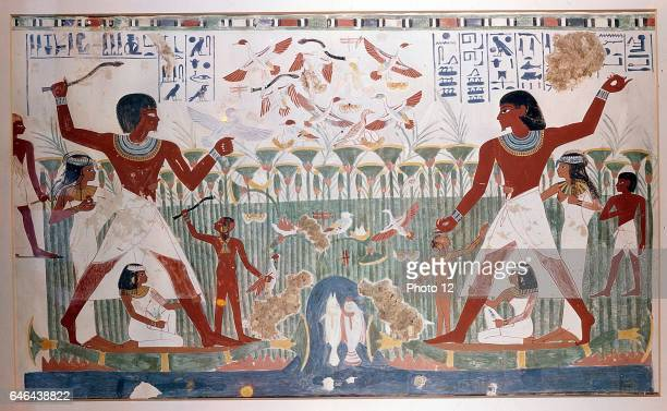 Ancient Egyptians hunting wildfowl with throwing sticks Picture shows Papyrus reed bed with fish and numerous birds including flock of geese taking...