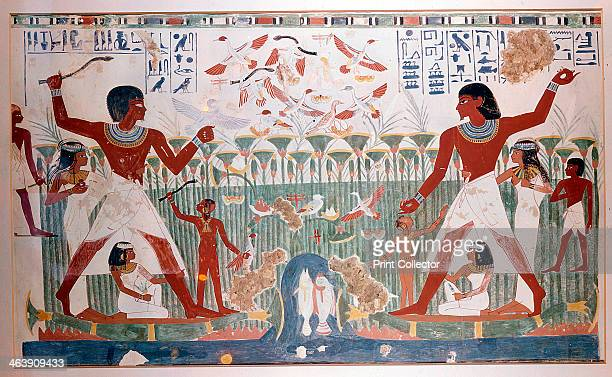 Ancient Egyptians hunting wildfowl with throwing sticks The picture shows a papyrus reed bed with fish and numerous birds including a flock of geese...