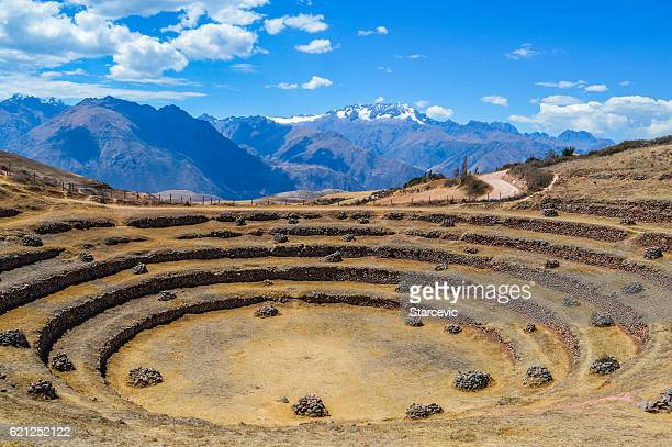 ancient inca circular terraces in moray, peru - peruvian culture stock pictures, royalty-free photos & images
