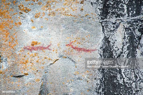 Ancient indian pictographs