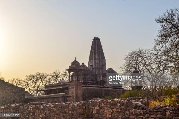 Ancient Jain temple-Ranthambore fort/Rajasthan