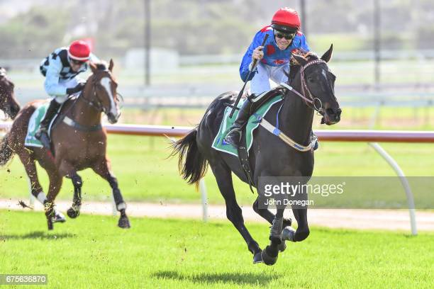 Ancient King ridden by John Allen wins the TABcomau Maiden Hurdle at Warrnambool Racecourse on May 02 2017 in Warrnambool Australia