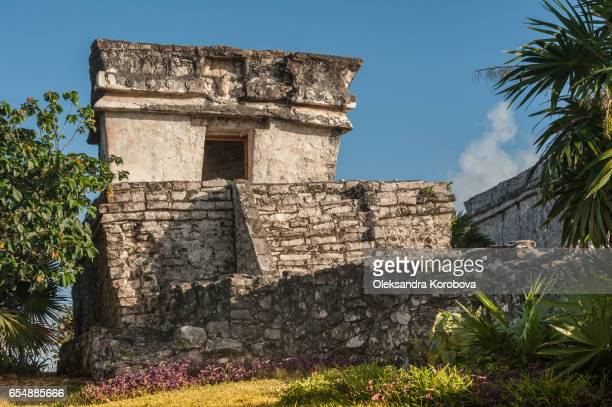 ancient mayan ruins at tulum. - istock stock pictures, royalty-free photos & images