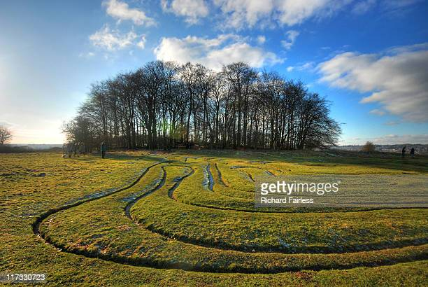 ancient maze - winchester hampshire stock photos and pictures