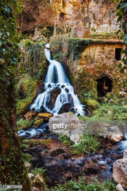 ancient mill with waterfall in forest - バシリカータ ストックフォトと画像