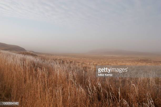 Ancient open prairie on a frosty morning near Minot North Dakota United States Reed beds and grasses cover much of the area This sparse landscape is...