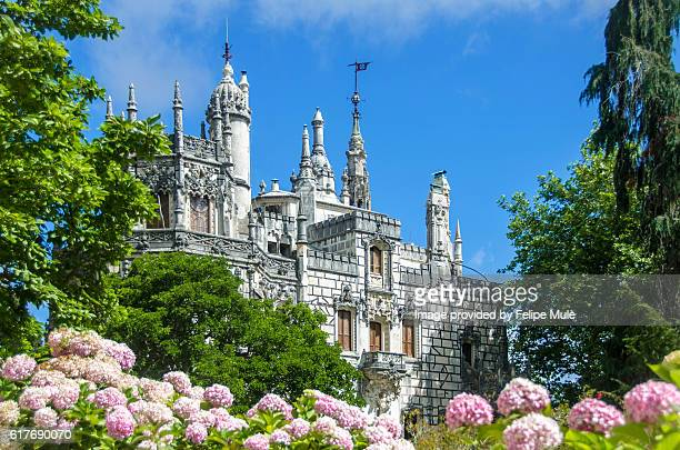 ancient palace sorrounded by trees and hydrangeas - quinta da regaleira photos stock pictures, royalty-free photos & images