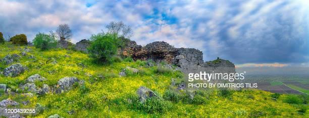 "ancient pelinna""u2019s  wall - dimitrios tilis stock pictures, royalty-free photos & images"