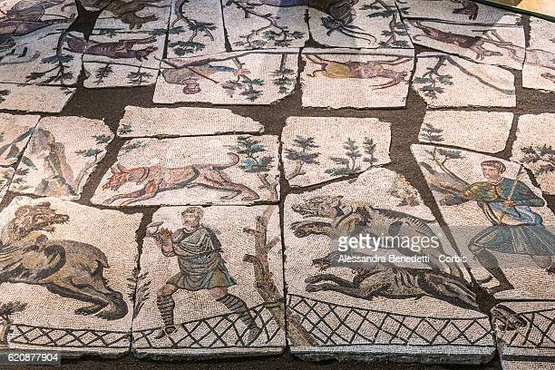 Ancient roman mosaic pieces are displayed at 'Centrale Montemartini' museum on November 3 2016 in Rome Italy The former Giovanni Montemartini...