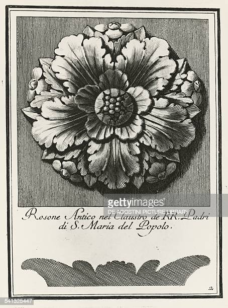 Ancient rosette from the cloister of Santa Maria del Popolo plate 2 elevation and section engraving from Manual of various ornaments by Carlo...