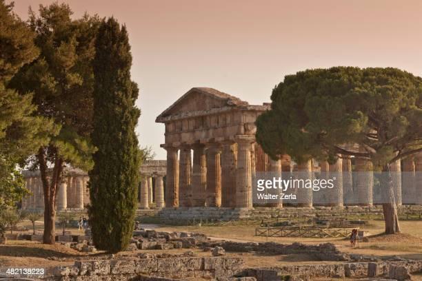 Ancient ruins in rural landscape, Paestum, Campania, Italy