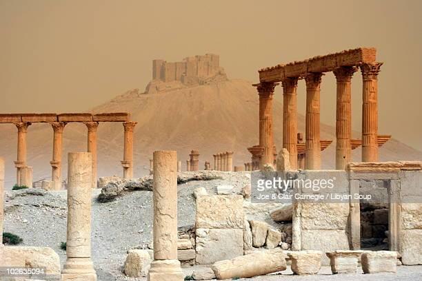 ancient ruins of palmyra - palmyra stockfoto's en -beelden