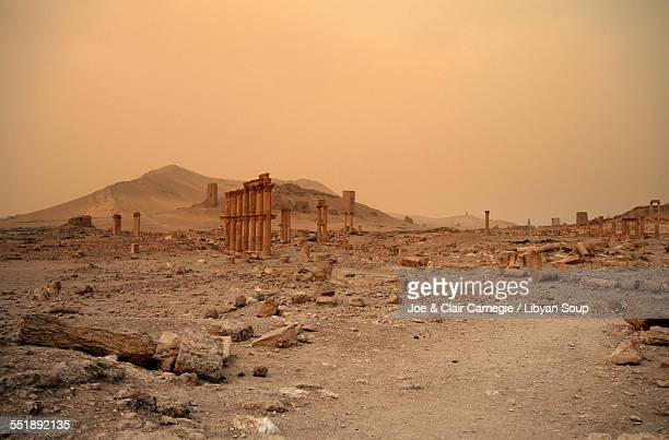 ancient ruins of palmyra, syria - roman stock photos and pictures