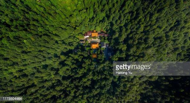 ancient temple hidden in forest - changsha stock pictures, royalty-free photos & images