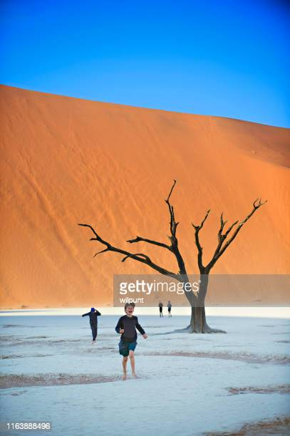 ancient tree with fresh victory - dead vlei namibia stock pictures, royalty-free photos & images