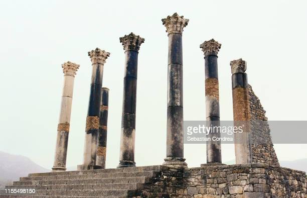 ancient volubilis roman old city, morocco, africa. - antike kultur stock-fotos und bilder