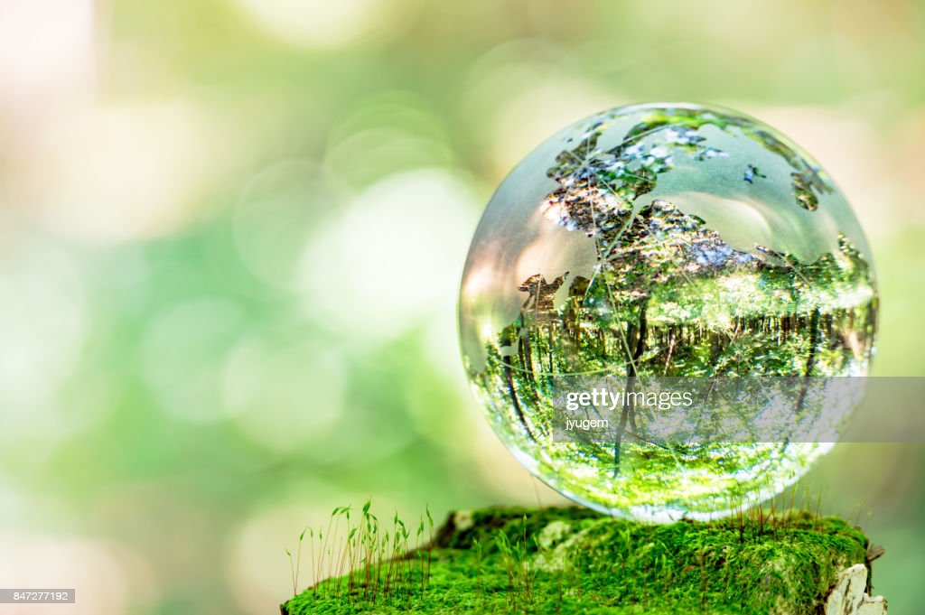 MOSS and glass globes : Stock Photo