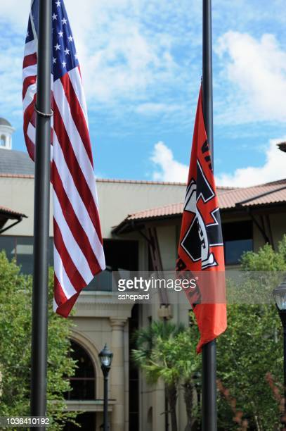US and Valdosta State University Flags